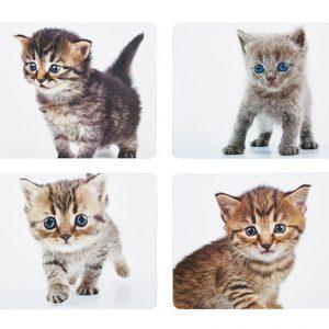 KitchenCraft Cat & Dog Cork Back Laminated Set of 4 Coasters
